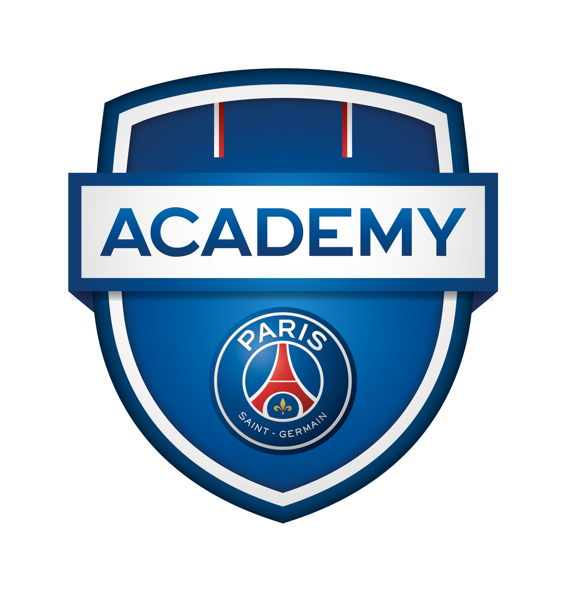 28+ Psg Logo Png Pictures